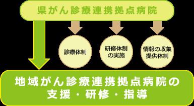 都道府県がん診療連携拠点病院としての機能 図